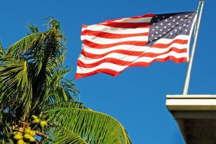 American flag waving next to a palm tree.